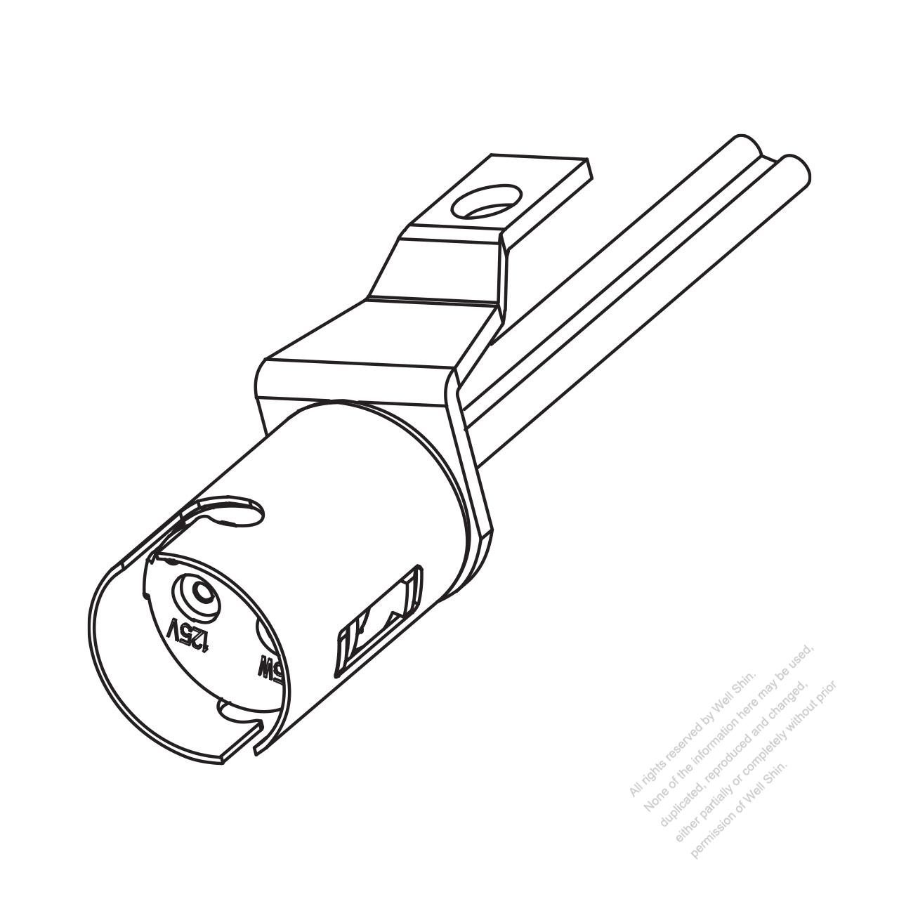 light socket  incandescent   led bulb